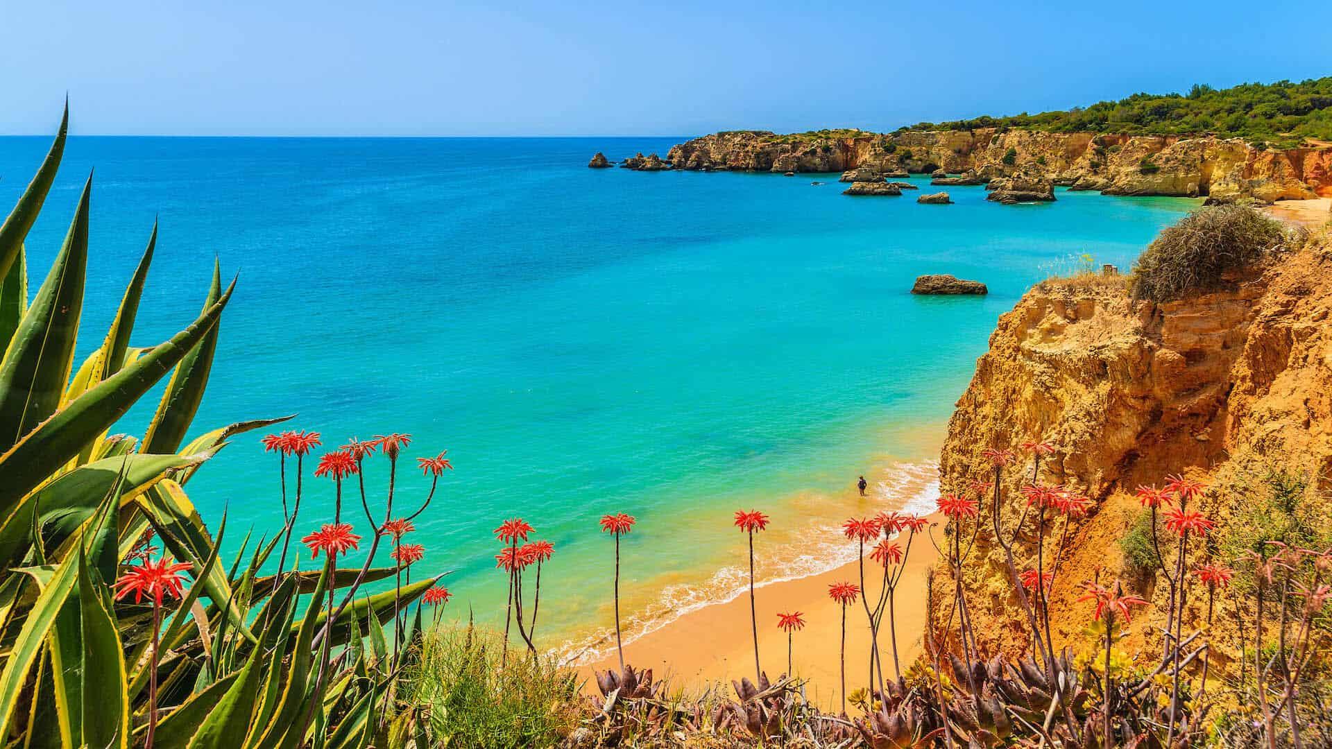 Cape Verde Webcam
