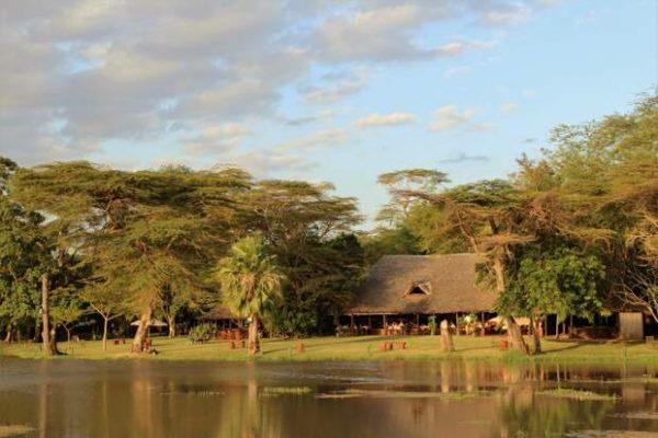 Kenya View
